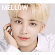 ao+,seventeen jeonghan mellow brown
